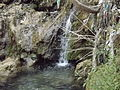 Rishikesh harikempty fallsdwar (405).JPG