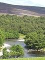 River Avon near Del - geograph.org.uk - 1136351.jpg