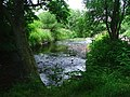 River Browney - geograph.org.uk - 74139.jpg