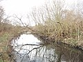 River Crane by Hounslow Heath - geograph.org.uk - 108636.jpg