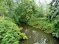 River Enborne - geograph.org.uk - 1421792.jpg