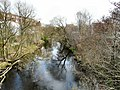 River Goyt - geograph.org.uk - 1207553.jpg