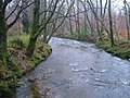River Yealm from Popple's Bridge - geograph.org.uk - 134318.jpg