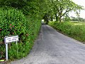 Road at Carrowreagh - geograph.org.uk - 1359676.jpg
