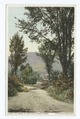 Road to Greylock, Adams, Mass (NYPL b12647398-75763).tiff