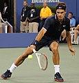 Roger Federer (7898188492).jpg