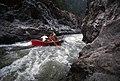 Rogue River-Siskiyou National Forest, drift boating Rogue River (37048446021).jpg