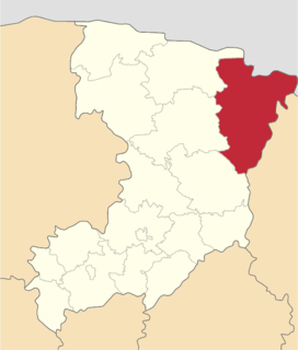 Rokytne Raion, Rivne Oblast Former subdivision of Rivne Oblast, Ukraine