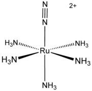 Structure of [Ru(NH3)5(N2)]2+.