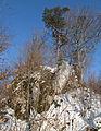 Ruine Pfannenstiel 20, Donautal.JPG