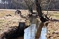 Rzeka Prut (dopływ Narwi).jpg