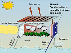 Seawater greenhouse - Figure 2. Inside the greenhouse - condensation: Water vapour is created by an array of hot pipes and successively condenses on cooler pipes