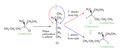 SN1Stereochemistry.png