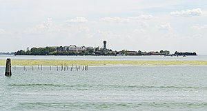 Sacca Sessola - View of the island