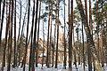 Salas Svētā Jāņa luterāņu baznīca - panoramio.jpg