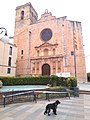 Sant Jaume de Riudoms - COVID.jpg
