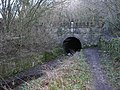 Sapperton Canal Tunnel - geograph.org.uk - 1054684.jpg