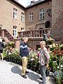 Schloss Nörvenich 2014 Rosenfest.jpg