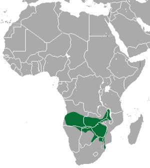 Selous' mongoose - Image: Selous' Mongoose area