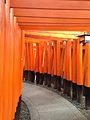 Sembon-Torii in Fushimi Inari Grand Shrine 1.jpg