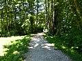 Sentier des Roselières @ Lake Annecy @ Saint-Jorioz (50471695958).jpg