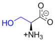 Serine at physiological pH