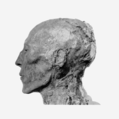 Seti I mummy head profile.png