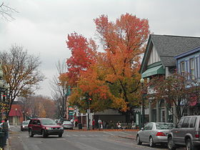 Sewickley during autumn.jpg