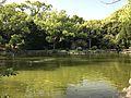 Shinjiike Pond of Munakata Grand Shrine (Hetsu Shrine) 5.jpg