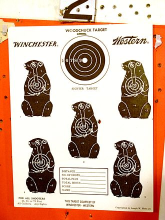 Shooting range - Shooting targets for woodchuck hunting