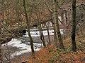 Shooting the Rapids - geograph.org.uk - 127900.jpg