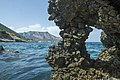 Shore of the Myrtle sea.jpg