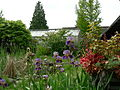 Shoreline CC garden and hothouse.jpg