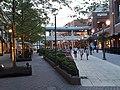 Short Pump Town Center at dusk - 7.jpg