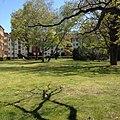 Siemensstadt - Siemensstadt (26997470926).jpg