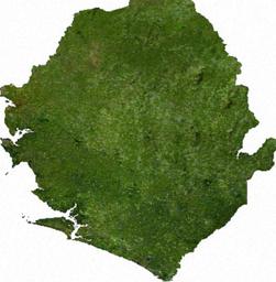 Sierra Leone sat.png