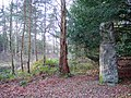 Skelton Park Ironstone Pillar, Close House - geograph.org.uk - 1140900.jpg
