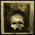 Skull 6, foto Augusto De Luca.jpg