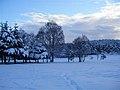 Snow, november 2010 031 (6538158211).jpg