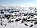 Snowy Rookhopeburn Head - geograph.org.uk - 1767647.jpg