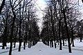 Snowy avenue - panoramio.jpg