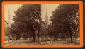South Broad Street, Savannah, Ga, from Robert N. Dennis collection of stereoscopic views 5.png