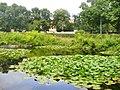 Spandau - Wroehmaennerpark - geo.hlipp.de - 40431.jpg