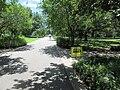 St Charles Avenue at Audubon Park New Orleans 11 June 2020 08.jpg