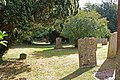 St Peter, Whitfield, Kent - Churchyard - geograph.org.uk - 1481195.jpg
