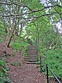 Stairway to Heptonstall - geograph.org.uk - 825584.jpg