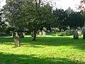 Standing Stones - geograph.org.uk - 296853.jpg
