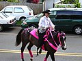 Starr-030705-0026-Cordyline fruticosa-July 4 Parade-Makawao-Maui (24554789221).jpg