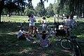 Starr 990401-0372 Casuarina equisetifolia.jpg