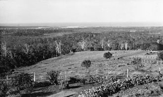 Buderim - Panoramic views from Buderim to Mooloolaba Beach, 1934